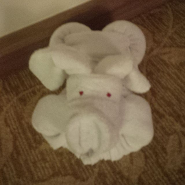 And a towel puppy! Awww...