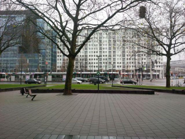 Views of Rotterdam.
